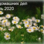 Календарь домашних дел апрель 2020